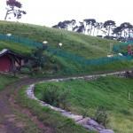 写真 2011-04-17 13 59 29